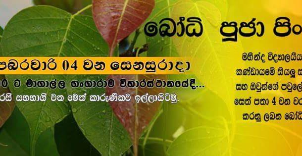 Annual Bodi-Puja